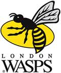 london_wasps